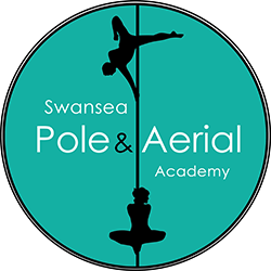 Swansea Pole and Aerial Academy